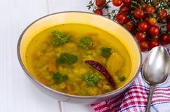 Kruidige Indische soep met graangewassen royalty-vrije stock foto