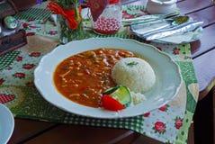 Kruidige kippenplakken en rijst stock afbeelding