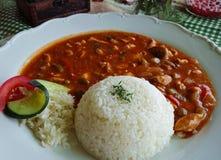Kruidige kippenplakken en rijst stock foto