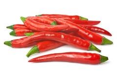 Kruidige rode Spaanse pepers die op witte achtergrond worden geïsoleerdp Royalty-vrije Stock Afbeeldingen