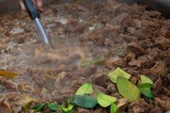 Kruidige Soep met kruidige koeingewanden stock afbeelding