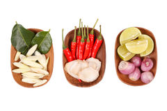 Kruidige Thaise voedselingrediënten Stock Afbeeldingen