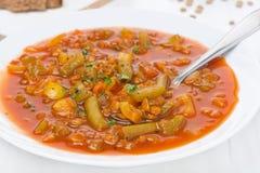 Kruidige tomatensoep met groene linzen en groenten, close-up Stock Afbeelding