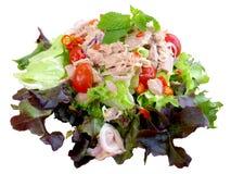 Kruidige tonijnsalade Royalty-vrije Stock Fotografie