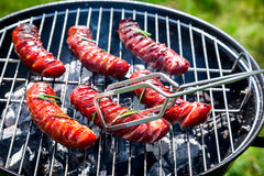 Kruidige worsten met kruiden en rozemarijn op een grill Royalty-vrije Stock Afbeeldingen