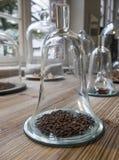 Kruidnagels en andere kruiden onder glasklok op houten lijst Daylig stock afbeelding