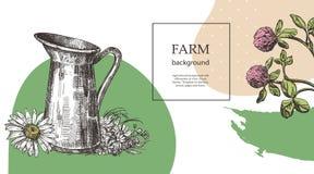 Kruik en boeket van wilde bloemen De illustratie van de schetsstijl Geschikt voor het ontwerp van natuurlijke producten landbouw royalty-vrije illustratie
