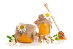Kruik honing met bloemen van acacia en kamille op witte achtergrond Stock Afbeeldingen