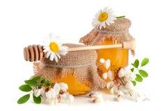 Kruik honing met bloemen van acacia en kamille op witte achtergrond wordt geïsoleerd die Stock Foto