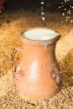 Kruik melk, tarwe Stock Fotografie