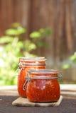 Kruik van naar huis gemaakte klassieke kruidige Tomatensalsa royalty-vrije stock foto
