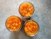 Kruiken de eigengemaakte ruige jam van de perzikbourbon op keukencountertop Royalty-vrije Stock Foto
