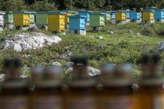 Kruiken honing op de achtergrond van het honingbijlandbouwbedrijf Stock Fotografie