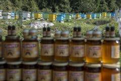 Kruiken honing op de achtergrond van het honingbijlandbouwbedrijf dichtbij Kondraq, Albanië Royalty-vrije Stock Foto