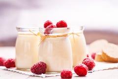 Kruiken met yoghurt en frambozen royalty-vrije stock foto's