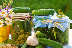 Kruiken van ingelegde komkommers in de tuin Stock Fotografie