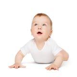 Kruipende nieuwsgierige baby die omhoog kijken Stock Foto