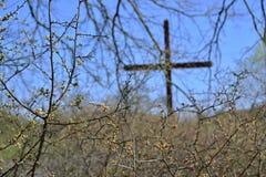Kruis achter een bloeiende struik Royalty-vrije Stock Foto