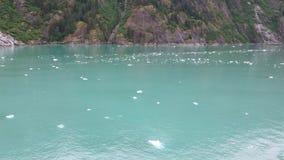 Kruis de Gletsjer Nationaal Park van Zuidoostenalaska Royalty-vrije Stock Afbeeldingen