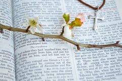 Kruis en kruisigingsscriptureachtergrond stock afbeelding