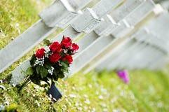 Kruis en rozen in een begraafplaats Stock Foto