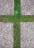 Kruis in het gras Stock Afbeeldingen