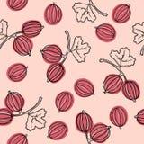 Kruisbes naadloos vectorpatroon De Indische boom van kruisbesmalacca, of kruisbes Eetbaar fruit Goed voor achtergrond, textiel vector illustratie