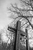 Kruisen en bomen tegen de hemel Royalty-vrije Stock Afbeelding