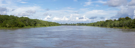 Kruisend op de rivier Amazonië, in het regenwoud, Brazilië Royalty-vrije Stock Foto