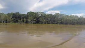 Kruisend op de rivier Amazonië, in het regenwoud, Brazilië stock video