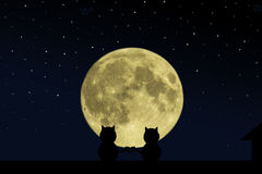 Kruiste zwarte kat twee hun staarten in de vorm van hart op het dak van het huis op het tijdstip van de volle maan Stock Fotografie