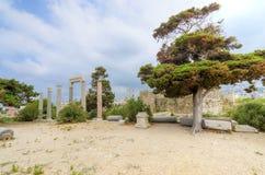 Kruisvaarderkasteel, Byblos, Libanon Stock Foto's