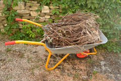 Kruiwagen met afvalhout Stock Afbeelding