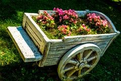 Kruiwagen met bloemen Stock Foto's