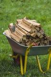 Kruiwagen met brandhout op groen gras Royalty-vrije Stock Afbeeldingen