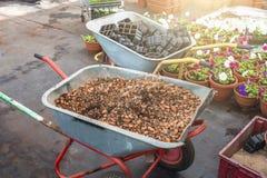 Kruiwagen met grint binnen in moderne serre, industrieel het tuinieren hulpmiddelenmateriaal voor tuinbouw stock afbeelding