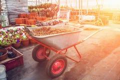 Kruiwagen met grint binnen moderne serre, industrieel het tuinieren hulpmiddelenmateriaal voor tuinbouw bij zonlicht royalty-vrije stock afbeeldingen