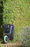 Kruiwagen in tuin Royalty-vrije Stock Foto's