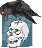 Kruk & czaszka Zdjęcie Stock