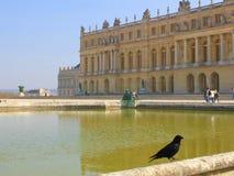 Kruk Versailles Obraz Stock