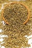 Kruka av guld- klumpar Arkivbilder