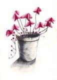 kruka för 2 blomma Royaltyfri Fotografi