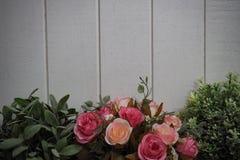 Kruka med för träplanka för rosor vit bakgrund royaltyfria bilder