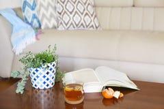 Kruka med suckulentväxter och den öppnade boken med teet på trä Royaltyfri Bild