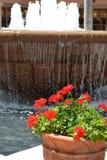 Krukor av vatten och blommor Royaltyfria Bilder