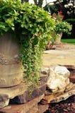 Krukor med blommor Arkivbild