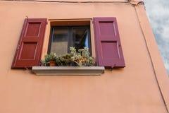 Krukor med växter på fönstret Arkivfoton