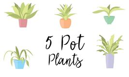 5 krukväxter i pastellfärgade färgade krukor vektor illustrationer