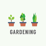 Krukväxter som arbeta i trädgården begrepp Arkivfoto