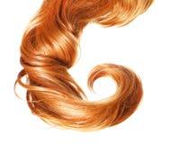 Krul Rood die Haar op wit wordt geïsoleerd royalty-vrije stock afbeelding